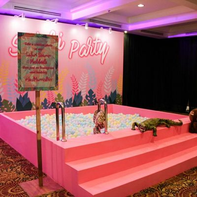 Animal party decorations and design KL