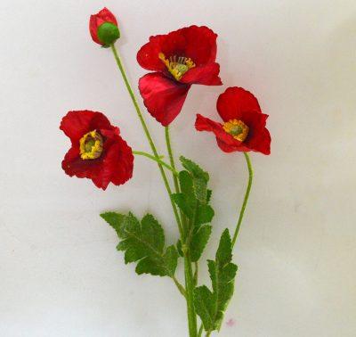 0341_Poppy Red